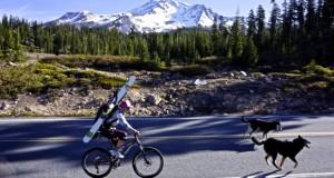 Sierra Spring Skiing